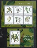 Liberia 2013**, Medizinpflanzen Mit Aloe, Caralluma  / Liberia 2013, MNH, Medicinal Plants With Aloe, Caralluma - Cactus