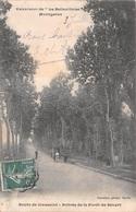 77 - Lieusaint-Senart  - Entrée De La Forêt De Sénart Animée Par Un Attelage - France