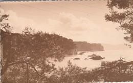 Var : TOULON : L'anse Magaud ( Photo  ) Format Cp - Toulon