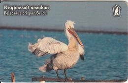 BULGARIA(chip) - Bird, Pelecanus Crispus Brush, Mobika Telecard 60 Units(type 2), Tirage 20000, 08/99, Used - Bulgaria
