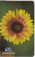 BULGARIA(chip) - Flower, Gerbera, Mobika Telecard 100 Units, Tirage 50000, 02/05, Used - Bulgaria
