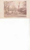 GRENAND LES SOMBERNON - Carte Photo - Altri Comuni
