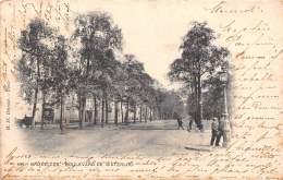 BRUXELLES - Boulevard De Waterloo - Avenues, Boulevards