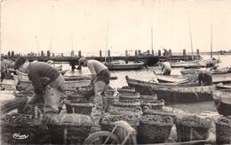 ¤¤  -  L'AIGUILLON-sur-MER   -  Emballage Des Moules Au Port   -  ¤¤ - France