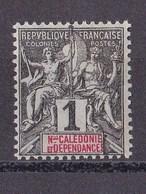 Nouvelle-Calédonie N°41** - Nouvelle-Calédonie