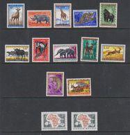 Belgisch Congo 1959 + 1960 Dieren + Samenwerking 14w * (met Plakker, Mint, Hinged) (38945) - Belgisch-Kongo