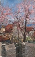 NOD Photochromie AK Unbekannt Non Identificato Gardasee Lago Di Garda Italia ? Serie 73 Nr 1873 Nenke Ostermaier Dresden - Cartoline