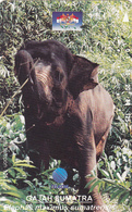 Indonesia Phonecard - Elephant -  Superb Used - Indonesia