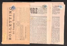 0812 LOTTI E COLLEZIONI - AUSTRIA - 1882 + 1882 + 1905 - Tre Giornali Del Periodo Da Rovereto (2) A Cles Con Segnatasse  - Stamps