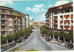 Treviso: FIAT 1100,500,600, AUTOBIANCHI BIANCHINA, OPEL REKORD P2, RENAULT 4, LANCIA FLAVIA COUPÉ 1.8, Palazzo Simonetti - Voitures De Tourisme