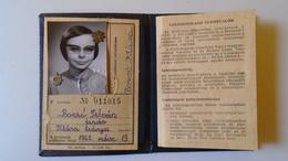 DEL004.4 Permis Ferroviaire -Railway Permit - MÁV Hungary  1970-80's  - Tax Stamp - Transportation Tickets