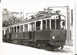 Grande Photo - Tramway  - Train -Annemasse - Trains