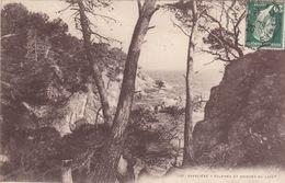 Cp , 83 , CAVALIÈRE , Falaises Et Criques Du Layet - Le Lavandou