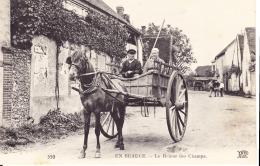 EN BEAUCE / LE RETOUR DES CHAMPS - Centre-Val De Loire