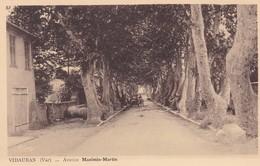 83 / VIDAUBAN / AVENUE MAXIMIN MARTIN / VOITURE - Vidauban