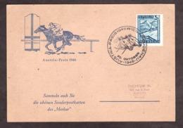 """Carte - Grand Prix """"Austria"""" à Vienne - 1946 - Cheval - Hippisme"""
