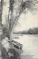 45 OLIVET Les Bords Du Loiret Chemin De Robinson - Autres Communes