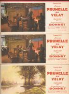 3 Buvards Anciens Liqueur PRUNELLE DU VELAY - Ets BONNET                E.SIRVEN Imprimeur - Liquor & Beer