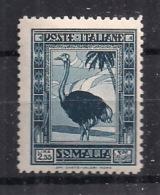 COLONIE ITALIANE  SOMALIA 1932 PITTORICA SASS. 180  Dent.12 MLH VF PICCOLA SPELLATURA INVISIBILE+++++ - Somalia
