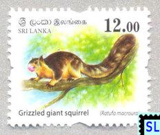 Sri Lanka Stamps 2018, Wild Animals, Squirrel, Definitive, MNH - 1 Of 3v - Sri Lanka (Ceylon) (1948-...)