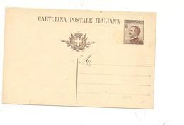 2306) 1925 INTERO POSTALE 40C MICHETTI NUOVO - Interi Postali