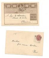 2307) 1895 INTERO POSTALE 10C LIBERAZIONE ROMA DA TORINO - Interi Postali