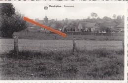 OEUDEGHIEN - Panorama - Frasnes-lez-Anvaing