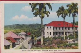 Old Postcard Virgin Lane And Presbytery Dominica Caribbean Sea Caraïbes Lesser Antilles Antillen West Indies British - Dominique
