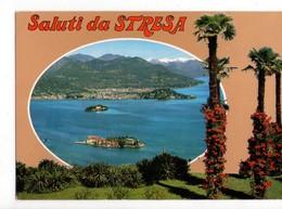 U2790 Cartolina SALUTI DA STRESA (verbania, Piemonte) Gruss Aus, Greetings From... _ NN CIRC. - Italie
