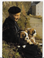 CPSM   ST Bernard Et Leur Chanoine - Dogs
