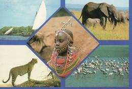 Kenya Multi-vues élephants Panthère Réserve Animaux Voilier Voile Flamands Roses - Kenya