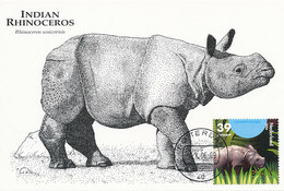 D34154 CARTE MAXIMUM CARD FD 2006 NETHERLANDS - INDIAN RHINO CP ORIGINAL - Rhinozerosse