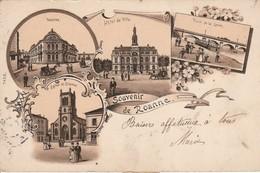 Loire : ROANNE : Souvenir De Roanne ( Précurseur ) - Roanne