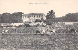 78-LIMAY- CHATEAU DES CELESTINS - Limay