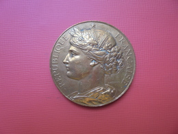 """FRANCE Médaille (NON-DATEE) TYPE """"CERES"""" (43 Gr-45 Mm) - Firma's"""