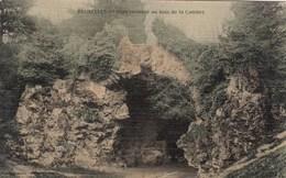 BRUXELLES / BRUSSEL / BOIS DE LA CAMBRE / PONT RUSTIQUE - Forests, Parks