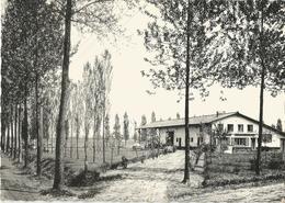 8Eb-746 St.Antoniushoeve / Kievit : KASTERLEE TOERISTISCH CENTRUM VAN DE KEMPEN 1968 - Kasterlee