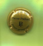 P20 : CHAMPAGNE PIERRE PAILLARD 3 - Other