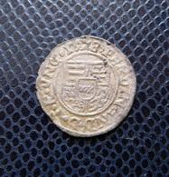 HUNGARY / FERDINAND I.(1526-1564) SILVER DENAR 1528 C- Lilie / UNGER -- - HUSZAR -- Rare! - Hungary