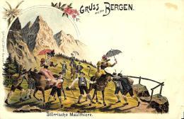 [DC12031] CPA - SVIZZERA - GRUSS AUS DEN BERGEN - STORRISCHE MAULTHIERE - Old Postcard - GR Grisons