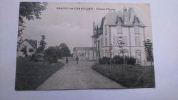Carte Postale (E3) Ancienne De Bragny En Charollais , Chateau D Eterne - Other Municipalities