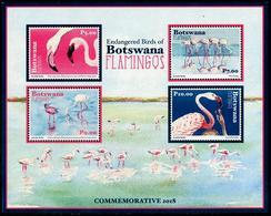 Botswana 2018 - Faune En Danger, Oiseaux, Flamants Du Botswana - BF  Neufs // Mnh - Botswana (1966-...)