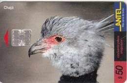 URUGUAY - Bird, Chaja(105a), 03/00, Used - Birds