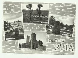 SALUTI DA STIA - VEDUTE VIAGGIATA FG - Arezzo