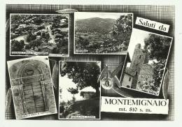 SALUTI DA MONTEMIGNAIO - VEDUTE    VIAGGIATA FG - Arezzo