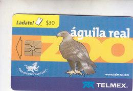 Mexico Phonecard LADATEL TELMEX AGUILA REAL  Royal Eagle Aguila Chrysaetos No Credit Good Condition - Mexico