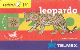 Mexico Phonecard LADATEL TELMEX AGUILA REAL  LEOPARDO PANTER  No Credit Good Condition - Mexico