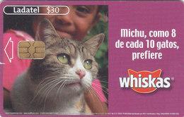 Mexico Phonecard LADATEL TELMEX WISKAS CATS FOOD No Credit Good Condition - Mexico