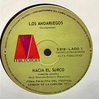 Sencillo Argentino De Los Andariegos Año 1973 - World Music