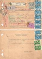 Paketbegleitadresse  Wimpassing Im Schwarzathale - St.Gallen           1920 - 1918-1945 1a Repubblica